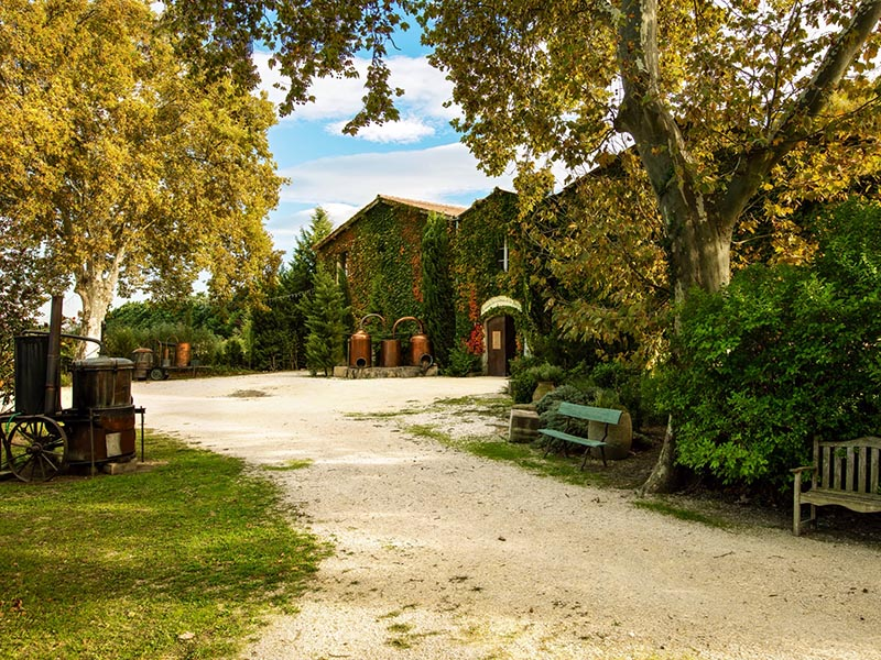 loeur-musee-provence
